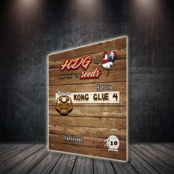 GRAINE-DE-CANNABIS-KONG-GLUE-4-HDG-SEEDS-HIGH-LINE-FEMINISEE