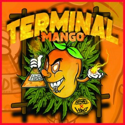 TERMINAL MANGO, Graines de cannabis de collection Féminisées. HDG SEEDS
