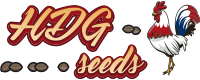 HDG SEEDS